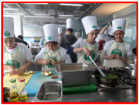 eco-cozinheiras